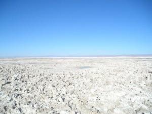 Die Salzseen von Atacama - Highlights einer Chile Reise
